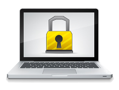 Computer Security and Professional Computer Services