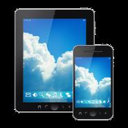 Mobile Device IT Management Services